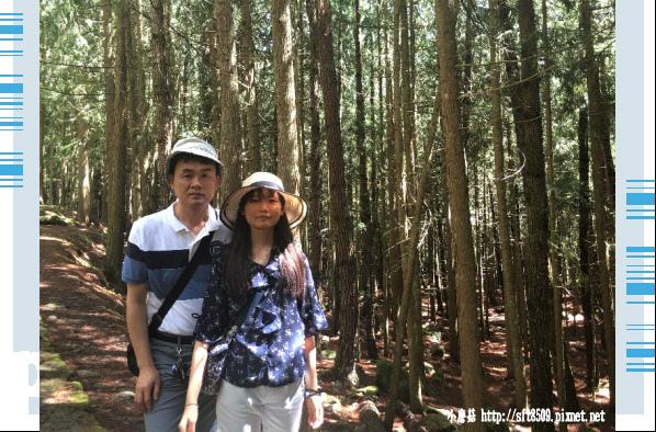 107.6.24.(8)武陵農場-桃山瀑布.JPG