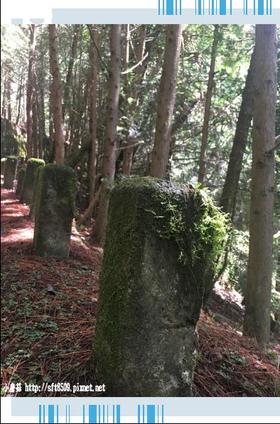 107.6.24.(19)武陵農場-桃山瀑布.JPG