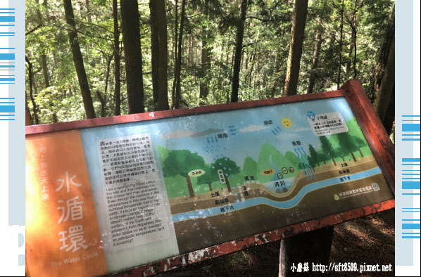 107.6.24.(22)武陵農場-桃山瀑布.JPG