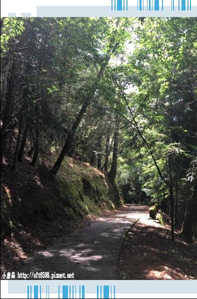 107.6.24.(32)武陵農場-桃山瀑布.JPG
