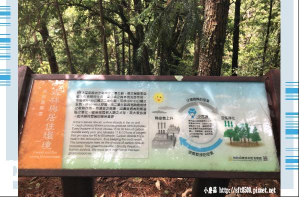 107.6.24.(40)武陵農場-桃山瀑布.JPG