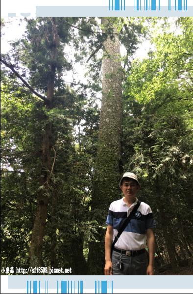 107.6.24.(50)武陵農場-桃山瀑布.JPG