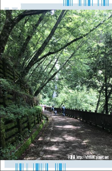 107.6.24.(65)武陵農場-桃山瀑布.JPG