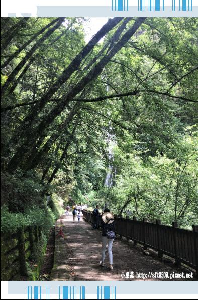 107.6.24.(66)武陵農場-桃山瀑布.JPG