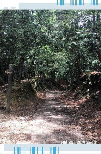 107.6.24.(104)武陵農場-桃山瀑布.JPG