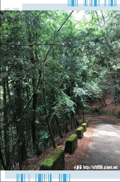 107.6.24.(111)武陵農場-桃山瀑布.JPG