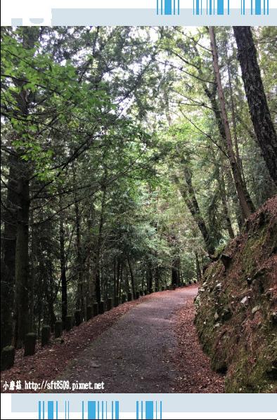 107.6.24.(120)武陵農場-桃山瀑布.JPG