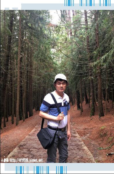 107.6.24.(136)武陵農場-桃山瀑布.JPG