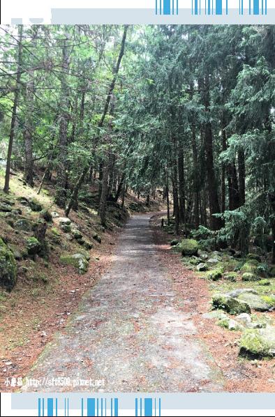107.6.24.(149)武陵農場-桃山瀑布.JPG