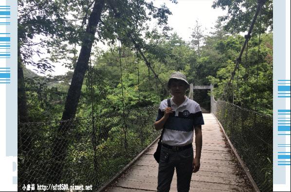 107.6.24.(155)武陵農場-桃山瀑布.JPG