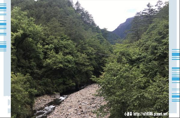 107.6.24.(158)武陵農場-桃山瀑布.JPG
