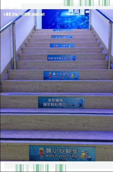 107.7.29.(12)花蓮-海礦探索館.JPG