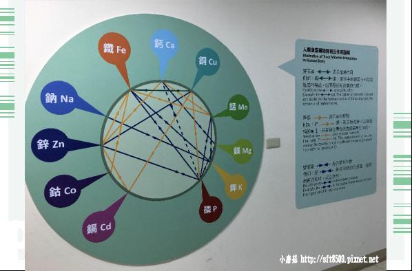 107.7.29.(46)花蓮-海礦探索館.JPG
