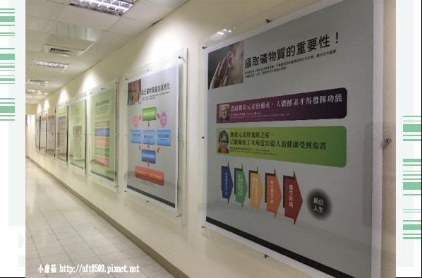 107.7.29.(66)花蓮-海礦探索館.JPG