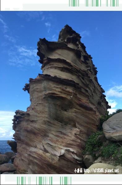 107.8.19.(20)南雅奇岩.JPG