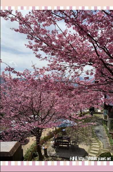 108.2.16.(34)拉拉山-觀雲休憩山莊.JPG