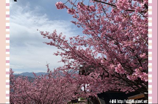 108.2.16.(39)拉拉山-觀雲休憩山莊.JPG