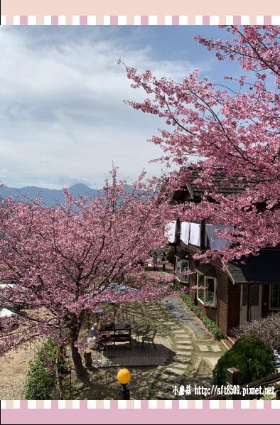108.2.16.(47)拉拉山-觀雲休憩山莊.JPG