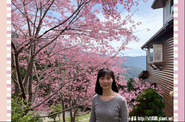 108.2.16.(73)拉拉山-觀雲休憩山莊.JPG