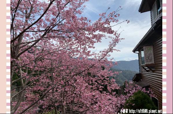 108.2.16.(75)拉拉山-觀雲休憩山莊.JPG