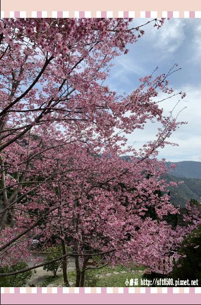 108.2.16.(76)拉拉山-觀雲休憩山莊.JPG