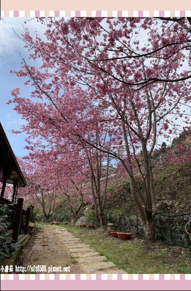 108.2.16.(83)拉拉山-觀雲休憩山莊.JPG