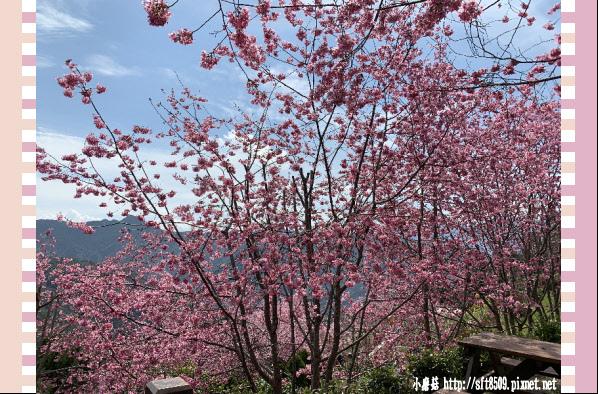 108.2.16.(130)拉拉山-觀雲休憩山莊.JPG