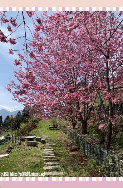 108.2.16.(134)拉拉山-觀雲休憩山莊.JPG