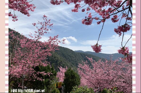 108.2.16.(148)拉拉山-觀雲休憩山莊.JPG