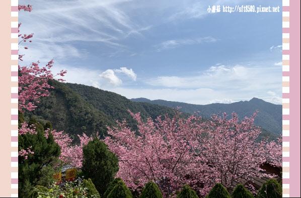 108.2.16.(150)拉拉山-觀雲休憩山莊.JPG