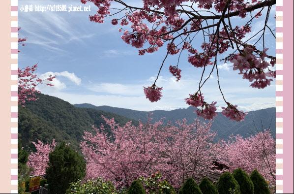 108.2.16.(151)拉拉山-觀雲休憩山莊.JPG