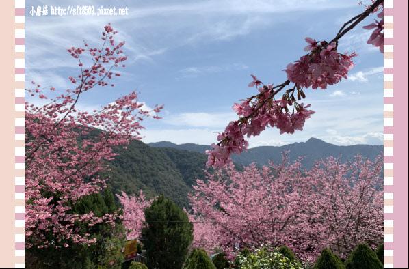 108.2.16.(153)拉拉山-觀雲休憩山莊.JPG