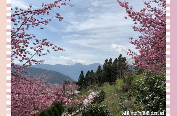 108.2.16.(160)拉拉山-觀雲休憩山莊.JPG