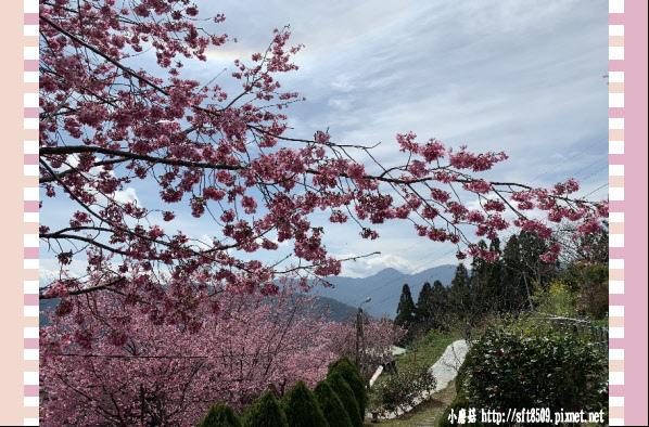 108.2.16.(161)拉拉山-觀雲休憩山莊.JPG