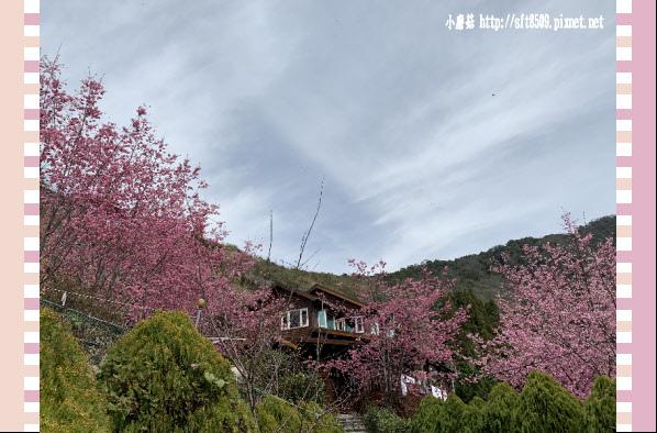 108.2.16.(164)拉拉山-觀雲休憩山莊.JPG