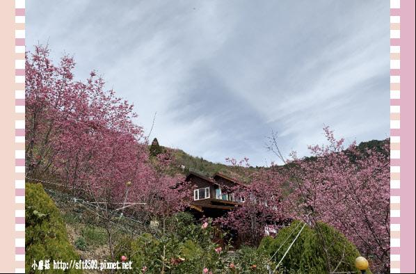 108.2.16.(165)拉拉山-觀雲休憩山莊.JPG