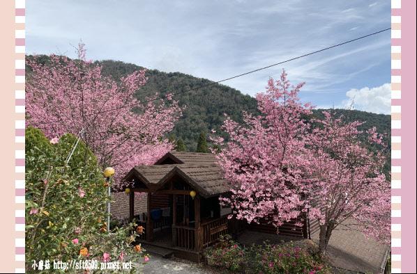108.2.16.(166)拉拉山-觀雲休憩山莊.JPG