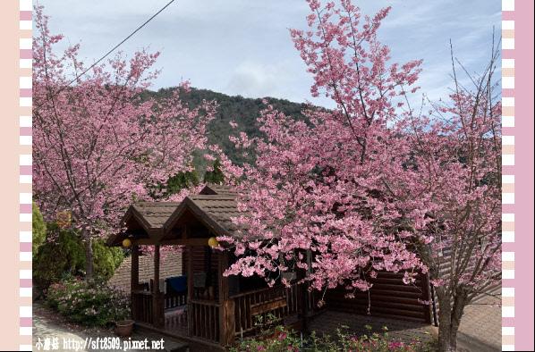 108.2.16.(167)拉拉山-觀雲休憩山莊.JPG
