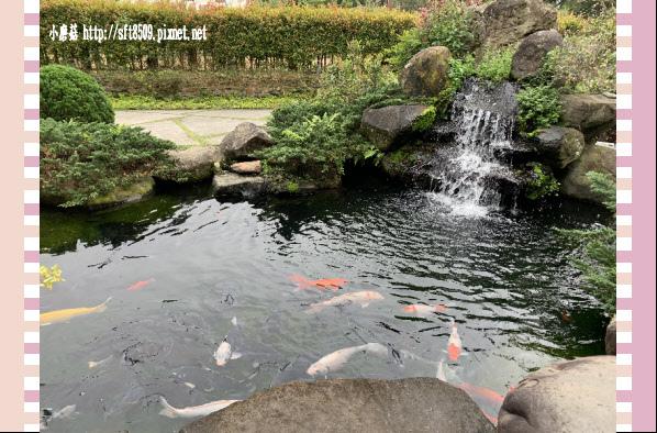 108.2.10.(13)大溪-魔幻豆子DIY觀光主題館.JPG