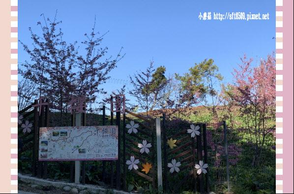 108.3.2.(1)福壽山農場-千櫻園.JPG