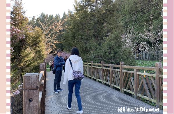 108.3.2.(8)福壽山農場-千櫻園.JPG
