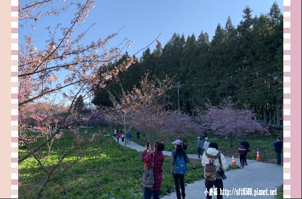 108.3.2.(9)福壽山農場-千櫻園.JPG