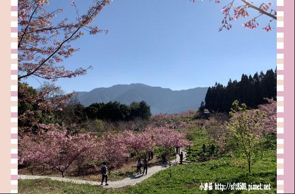 108.3.2.(22)福壽山農場-千櫻園.JPG