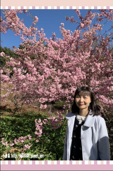 108.3.2.(59)福壽山農場-千櫻園.JPG