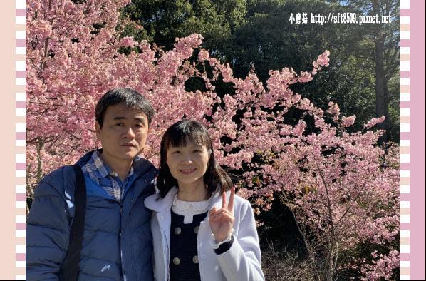 108.3.2.(72)福壽山農場-千櫻園.JPG