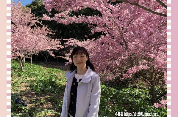 108.3.2.(96)福壽山農場-千櫻園.JPG