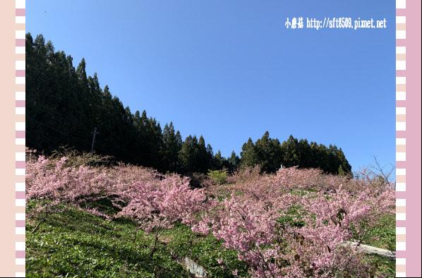 108.3.2.(142)福壽山農場-千櫻園.JPG
