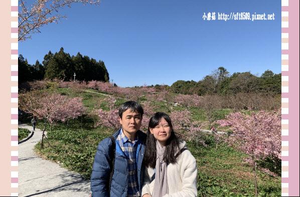 108.3.2.(146)福壽山農場-千櫻園.JPG