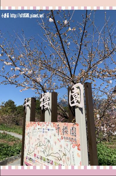108.3.2.(153)福壽山農場-千櫻園.JPG