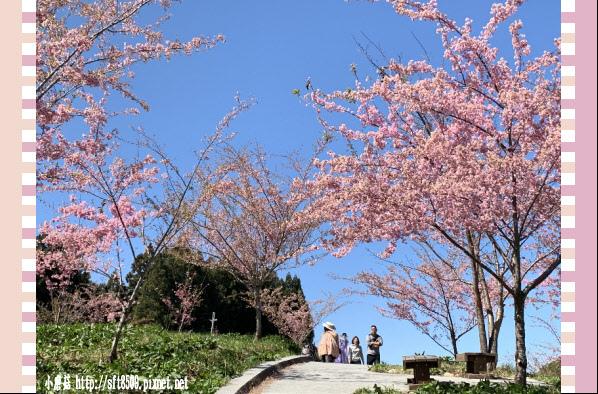 108.3.2.(161)福壽山農場-千櫻園.JPG